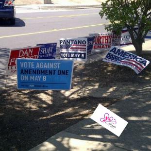 Voting against Amendment One